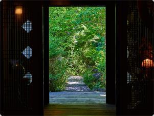 ロビーより玄関を望む。新緑が眩しい。