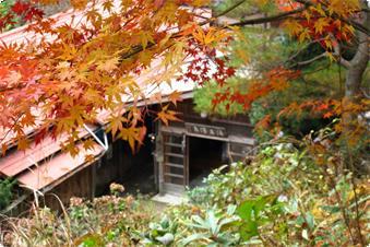 山の中の一軒宿のため、季節を感じることができます。