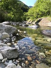 宿から数百メートルで川に降りることができます。水の冷たさには注意が必要ですが、気軽に水遊びを楽しみことができます。