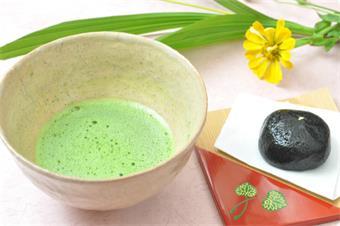 この地に咲く野の花と、光が注ぐロビーで 立てたばかりのお抹茶と和菓子でお出迎えいたします。