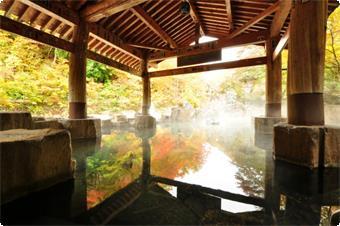 エコパック『一ノ倉沢エコハイキング&宿泊』プラン:サブ