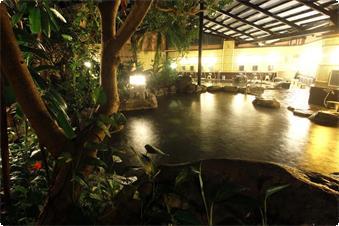 新ジャングル大岩風呂