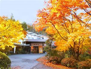 敷地15000坪の晴観荘にはもみじがたくさん。10月下旬から11月中旬の紅葉は見事です。お庭で紅葉狩り、いかがですか?