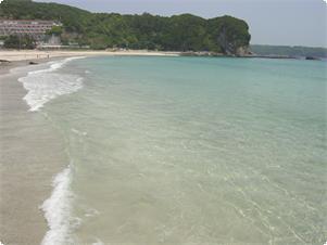 多々戸浜は写真の通りとても綺麗な海です。魚の群れが足元を泳ぐ事も♪