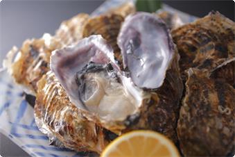 冬が旬、浦村牡蠣