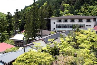 宿の周りは箱根の大自然。