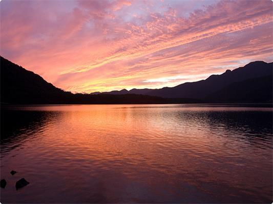 静かな自然を楽しむ朝カヌー体験付プランです♪