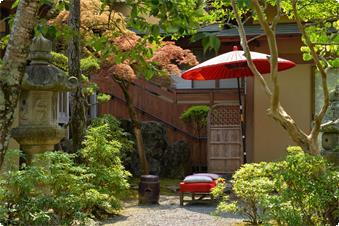 玄関横の食事処【しらゆき】赤い野点傘と緋毛氈が緑の庭に映えて、最近は外国人の方のカメラスポットです。